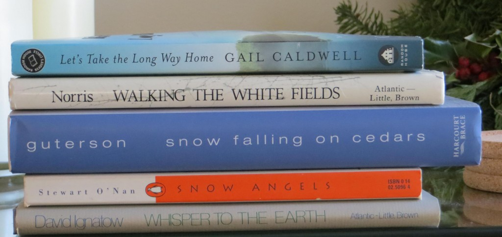 January spine poetry 1